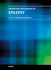 Underlying Mechanisms of Epilepsy