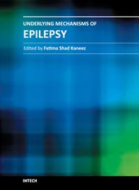 Underlying Mechanisms of Epilepsy