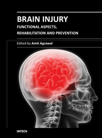 Brain Injury - Functional Aspects, Rehabilitation and Prevention