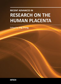 Recent Advances in Research on the Human Placenta