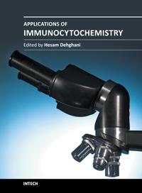 immunocytochemistry