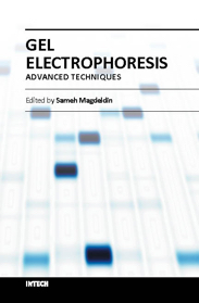 Gel Electrophoresis - Advanced Techn ...