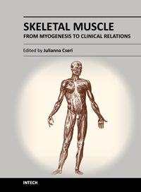 Skeletal Muscle - From Myogenesis to Clinical Relations