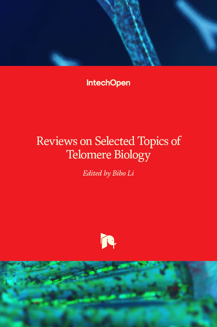 what is telomerase