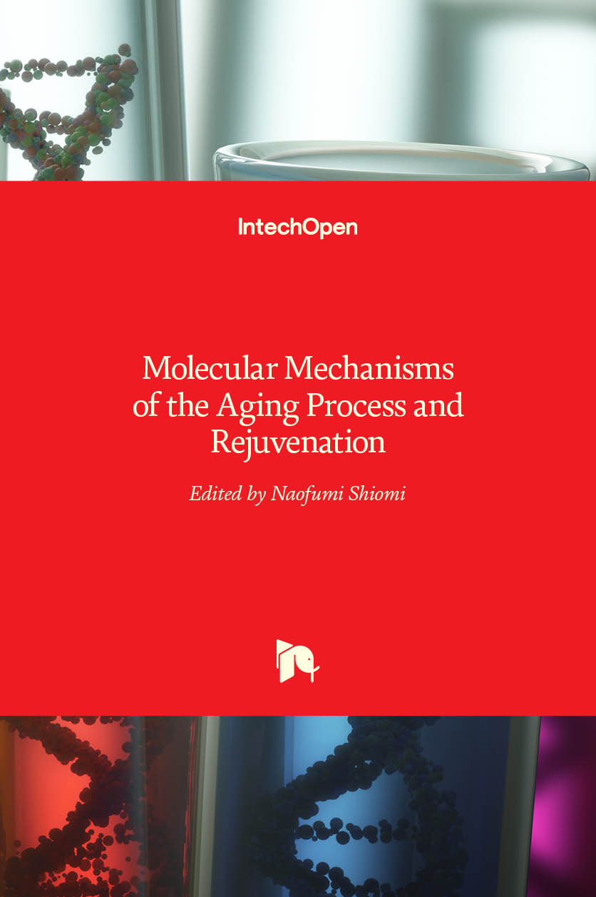 Molecular Mechanisms of the Aging Process and Rejuvenation