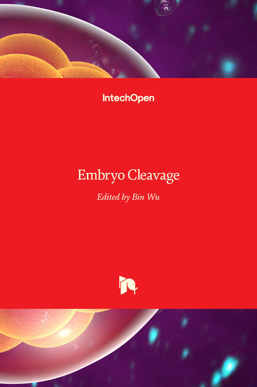 Embryo Cleavage