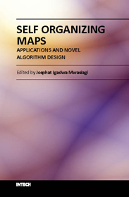 Self Organizing Maps - Applications and Novel Algorithm Design