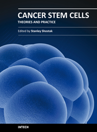 Cancer Stem Cells Theories and Practice
