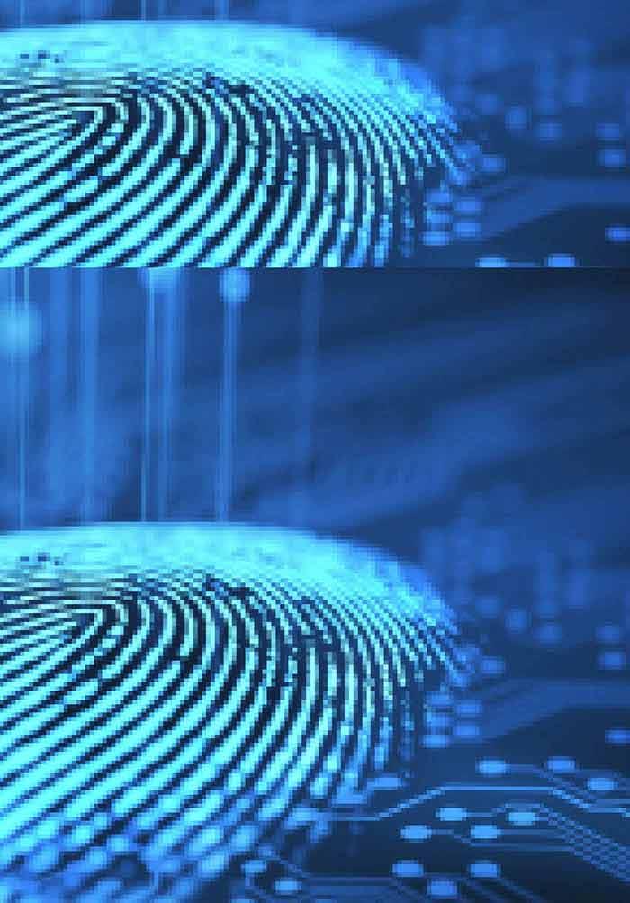 Non-minutiae based fingerprint descriptor | IntechOpen