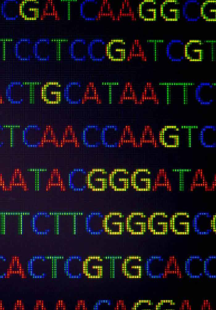 Genetic Transformation of Forest Trees   IntechOpen