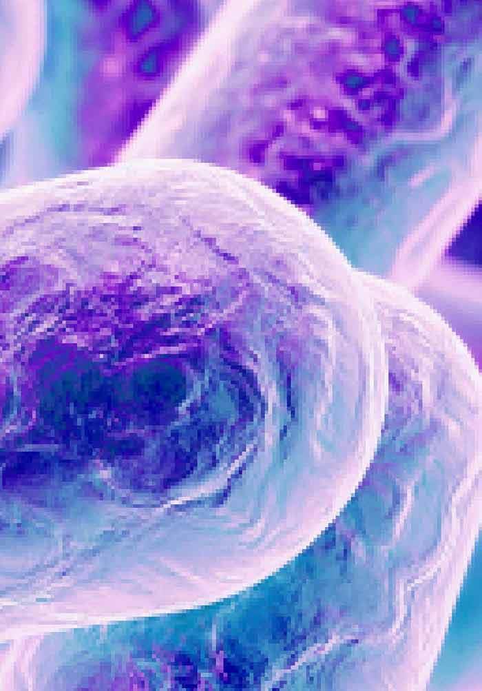 Epidemiology of Multidrug Resistant Tuberculosis (MDR-TB