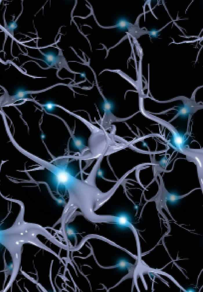 neuroimaging intechopen