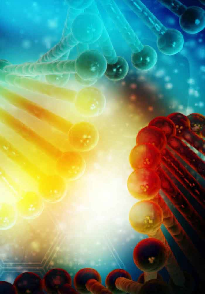 Genetically Engineered Bacteria In Gene Therapy Hopes And