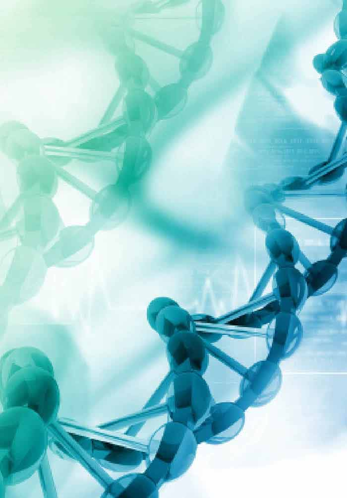 Nucleic Acid-based Diagnosis and Epidemiology of Infectious Diseases |  IntechOpen