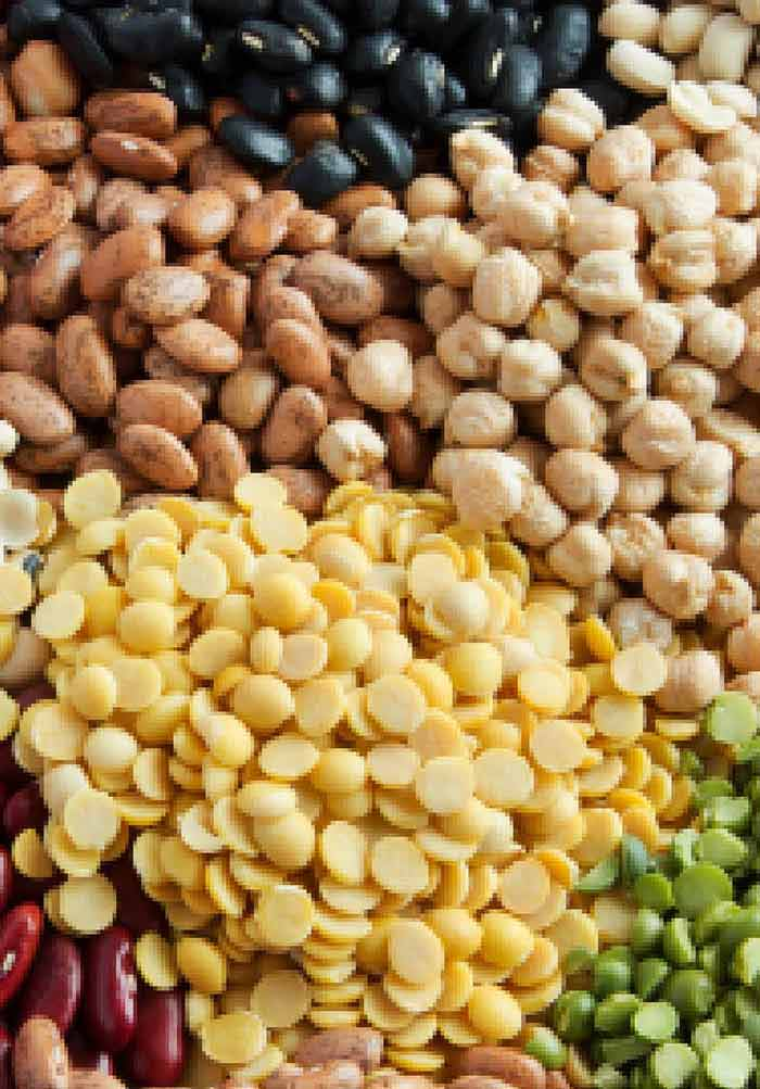 Genetic Control of Cadmium Concentration in Soybean Seeds