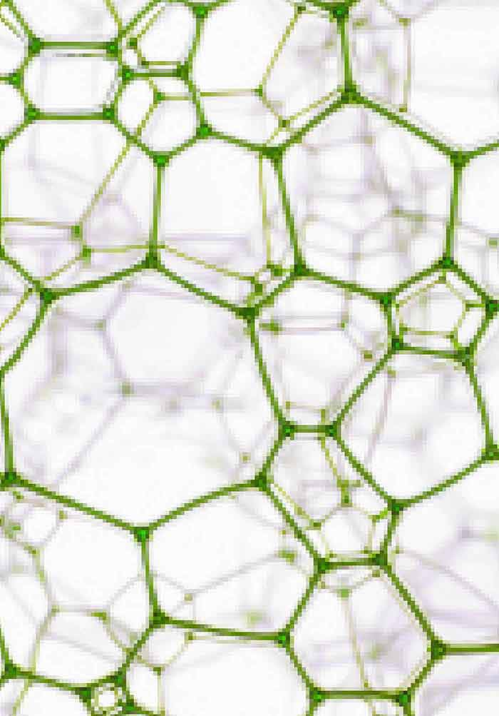 Metal Nanoparticles as Emerging Green Catalysts | IntechOpen