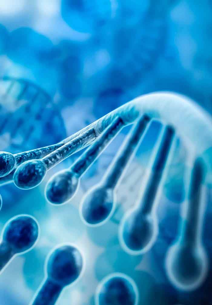 Biochemistry, Genetics and Molecular Biology | IntechOpen