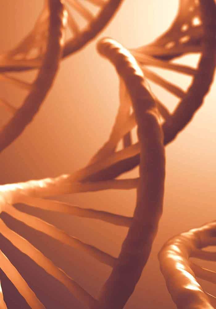 Stem Cells and Extracellular Vesicles: Biological Regulators